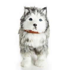 The Queen's Treasures Doll Pet Husky Dog wi th Collar/Leas Pet Dogs, Dogs And Puppies, Pets, Husky Puppy, Collar And Leash, 18 Inch Doll, Doll Accessories, 6 Years, Cute Animals
