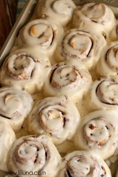 Easy and delicious Cinnamon Rolls with homemade cream cheese frosting made in an hour. These rolls are super soft, gooey and quick! Overnight Cinnamon Rolls, Easy Cinnamon Rolls, Cinnamon Roll Frosting, Cinnabon Rolls, Cinnamon Cream Cheeses, Dessert Recipes, Breakfast Recipes, Sweet Treats, Yummy Food