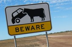 Sixteen weird ‪#‎roadsigns‬ you could only see in ‪#‎Australia‬ www.parkmyvan.com.au #ParkMyVan #Travel #RoadTrip #Backpacking #VanHire #CaravanHire‬‬‬