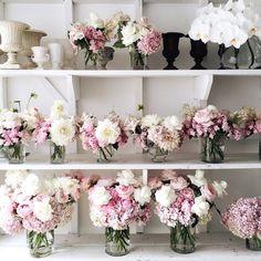 Flower studio tour