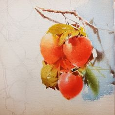 2017수업시연중에~~ : 네이버 블로그 Watercolor Fruit, Watercolor And Ink, Watercolor Flowers, Watercolor Paintings, Watercolors, Oil Painting Techniques, Botanical Art, Art Drawings, Flora