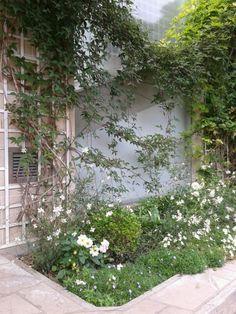 gardens przydomowe ogrodki