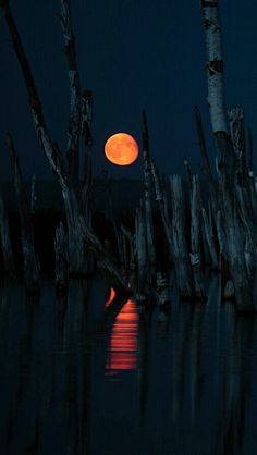 Thanks for visiting Beautiful Mother Nature. Sometimes people put up walls, not to keep others out, but to see who cares enough to break them down Moon Shadow, Shoot The Moon, Moon Pictures, Moon Pics, Sun Moon Stars, Beautiful Moon, Beautiful Scenery, Beautiful Pictures, Moon Magic