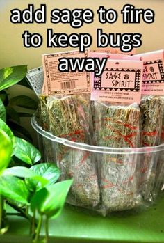 Adding sage to your campfire or firepit keeps mosquitos and bugs away. Adding sage to your campfire or firepit keeps mosquitos and bugs away. Camping Info, Vw Camping, Camping Survival, Glamping, Camping Hacks, Camping Stuff, Survival Prepping, Camping Supplies, Camping Recipes