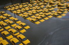 A parking lot full of yellow cabs is flooded as a result of Hurricane Sandy in Hoboken. (AP)