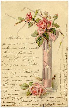Roses, script
