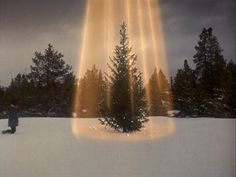 97 Best National Lampoons Christmas Vacation Images Christmas