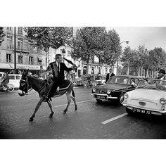 Un jour en #France - #1962 - Cet homme #TonyAndal n'a plus son permis. Il lui a été retiré pour 6 mois pour non paiement d'amende. Alors pour protester il décide de circuler à dos d'âne et celui-ci est parfaitement en règle pare-brise à l'avant feux à l'avant et à l'arrière et rétroviseurs. En revanche il avance lentement et sur les #ChampsElysée les automobilistes deviennent fous . Photo : Jack Garofalo/ #ParisMatch - plus d'#archives sur @parismatch_vintage by parismatch_magazine