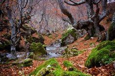 Foto: Edgar García paisajes de otoño