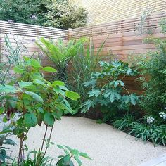 Islington ground floor garden Cedar slatted design screens were constructed and fixed onto existing perimeter fencing