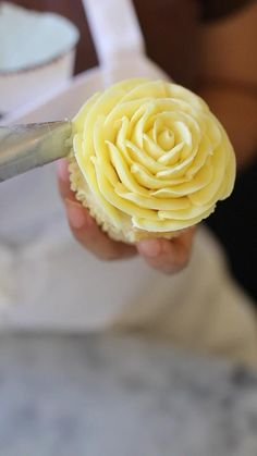 Beautiful rose cupcakes made by Magnolia Bakery