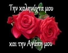Good Night, Rose, Flowers, Plants, Diy, Nighty Night, Pink, Have A Good Night, Bricolage