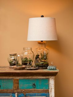 DIY Terrariums: Expert Tips and Advice >> http://blog.diynetwork.com/maderemade/2015/01/13/lets-talk-terrariums-expert-advice-for-tabletop-gardens/?soc=pinterest