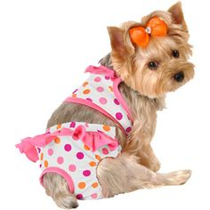 Lulu - Polka-Dot Dog Bikini with Ruffles, Pink The Pug, Cute Little Puppies, Cute Dogs, Dog Swimsuit, Animals And Pets, Cute Animals, Cute Dog Clothes, Dog Clothes Patterns, Dog Dresses