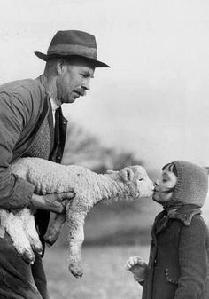 Kiss From A Lamb.. | Marc Riboud Photography