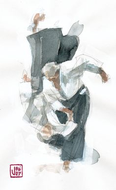 Aikido by ~vincentbailly on deviantART