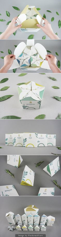 Packaging ideas Shizen Indoor Gardening System by In-young Bae