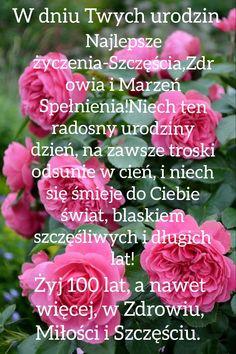 Rose, Birthday, Flowers, Plants, Pink, Birthdays, Plant, Roses, Royal Icing Flowers