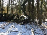 Laufend gebloggt: Mühlen-, Krockenwald-, Weißel- und Kleberbachtal