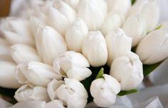 blommorsbetydelsepuff