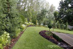 Ogród z lustrem - strona 162 - Forum ogrodnicze - Ogrodowisko