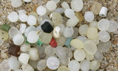 UN scientists call for action on marine microplastics