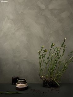 Sommaräng_greenleaf_8469_650px Faux Painting, Texture Painting, Jotun Lady, Tadelakt, Old Wall, Nordic Design, Living Room Colors, Minimalist Bedroom, Textured Walls