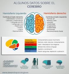 Medicine Notes, Medicine Student, Brain Memory, Nursing Books, Science Facts, Educational Websites, Keeping Healthy, Med School, Health Problems