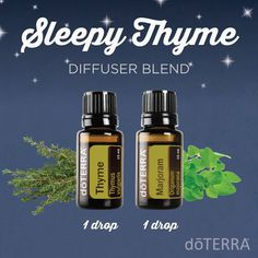 Sleepy Thyme -  Good night and we hope you had a good Thyme in your dreams!
