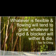 My motto, go with the flow, be flexible!