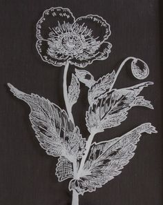 Make these my tracing a flower with a pinpoint sharpie on glass. Do it Yourself......Momster | Blog | From Family Circle: Modern Vintage Botanical Prints