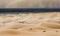 One hell of a storm: Father captures the moment huge sandstorm sweeps over Moroccan desert on day trip with his family