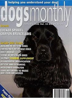 Dogs Monthly « dogsiteworld.com