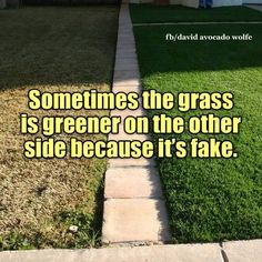 Sometimes Grass Is Greener On The Other Side Because Its Fake