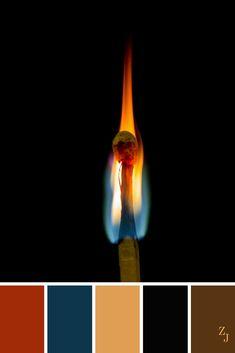 ZJ Colour Palette 383 #colourpalette #colourinspiration