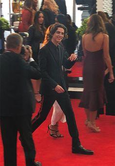 SAG Award nominee of walks the Red Carpet. Beautiful Boys, Pretty Boys, Regulus Black, Timmy T, Raining Men, Celebrity Crush, Pretty People, Actors & Actresses, Boyfriend