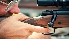 Accurizing Your Firearm: Part 4 – Triggers Hunting Guide, Cheap Web Hosting, Big Game, Firearms, Hand Guns, Crisp, Minimal, Pistols, Weapons