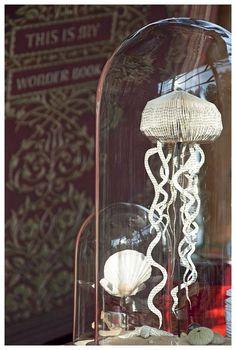 Jellyfish under glass.