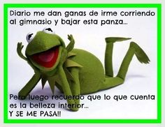 Kermit the Frog – The Muppets Illustration, Jim Henson Movie Pop Art, Sesame Street Home Decor, Poster, Film Print Canvas Funny Quotes, Funny Memes, Hilarious, Jokes, Funny Vid, It's Funny, Spanish Humor, Spanish Quotes, Sapo Meme