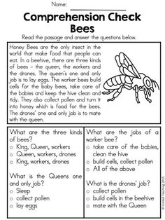 """Invent An Insect"""" Great As Formative Assessment At The End Of A Unit"""