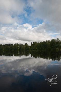 Lake Juojärvi, summer 2012. Heinävesi, Finland. Photo © Soili Mustapää.