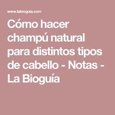 Cómo hacer champú natural para distintos tipos de cabello - Notas - La Bioguía