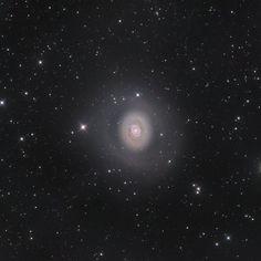 M94: Halo de espacio profundo por Nicolas Outters