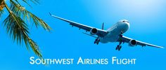 If you want to book your flight tickets then you can visit the southwest airlines' flight reactions official website where you can book your flight tickets at the lowest prices. Flight Tickets, Cheap Plane Tickets, Airline Tickets, Southwest Airlines Reservations, Airline Reservations, Flight Reservation, Airline Booking, Cheap Airlines, Post Free Ads