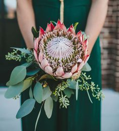 considering this for the bridesmaids :yeah, i love this and imagine how pretty it will look agaisnt the burgundy!!  king  protea