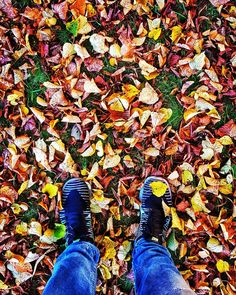 Eka pakkasaamu 20102017  #europe #instafinland #järvenpää #travel #traveler #traveling #travelgram #finnishboy #landscape #landscape_lovers #finnish #travelphotography #instatravel #colorsplash #instagramers #visitfinland #thisisfinland #discoverfinland #nature #hiking #syksy #autumn #finnishmoments#lovelyfinland #thebestoffinland #nature #instarunners #trailrunning #beautyofsuomi #fitness