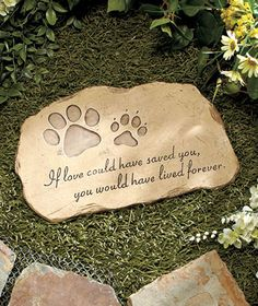 If love could have saved him, my Timothy would have lived forever.  Pet Memorial Garden Stones at lakeside.com