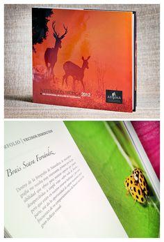 B.Seara www.braisseara.com www.aefona.org