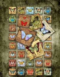 Old World Butterfly Collection  INSTANT DOWNLOAD por opticillusions
