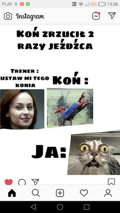 Dark Net, Lol, Horses, Humor, Memes, Funny, Movie Posters, Instagram, Cheer